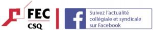 Facebook_FEC